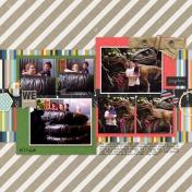 Family Album 1998: Say Cheese!