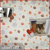 Closet Cat