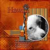 Hawaii 001