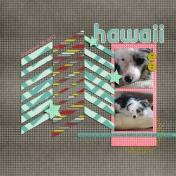 Hawaii 003