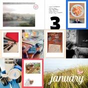 2016 Week 3b- January