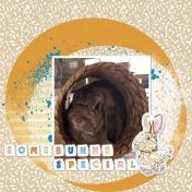 Easter Bunnies 2