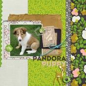 Pandora Puppy