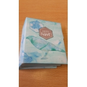 mini mini album in the pocket