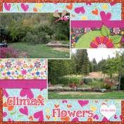 Climax Yard