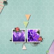 Flowers / Scraplift