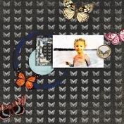 Seriously Butterflies