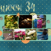 Project 52- week 34