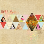 Project 52- 2014- week 25