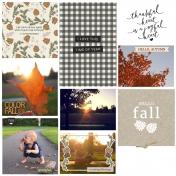 An Autumn Day...