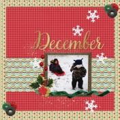 Life Captured: December I