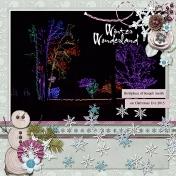 Winter Wonderland- lights