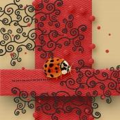 Pretty Little Ladybug