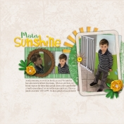 Mister Sunshine
