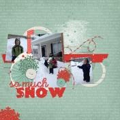 Winter Storm Jonas- 18 Inches of Snow!