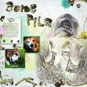 Bone Pile