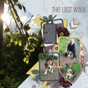 Last Walk