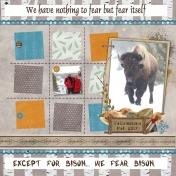 Bison Fear