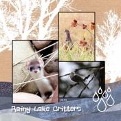 Rainy Lake Critters