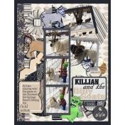 Killian and the Billy Goats