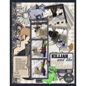 Killian and the Billy Goats