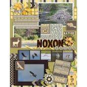 Day 10- Noxon Fauna