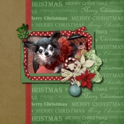 Christmas Canine Card