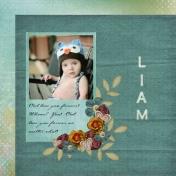 Liam- owl cap