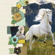 Horses 12
