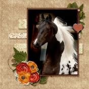 Saddlebred Beauty