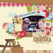 Picnic at Sequoia Park