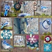Blue Jay Lover's Paradise
