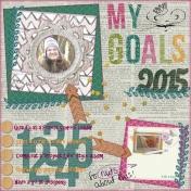 My goals 2015