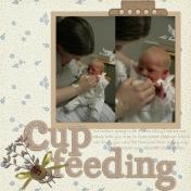 Cup feeding