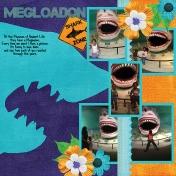 Mega Through the Years