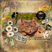 Kitty Cat 01 by SCRAPBOOKINGDOM®