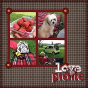 love 2 picnic