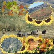 Turkeys and leaves
