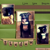 Shadow Live Love Rescue Summer 2016
