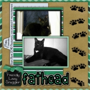 Fathead- A Furbaby Looking for his furever home....