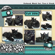 Black Cat PHOTO SHOOT