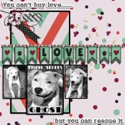 You Can't Buy Love But You Can Rescue It- Misfit Ghost