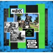 Misfit Mighty Midas!