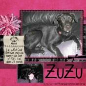 Misfit ZuZu