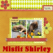 Misfit Shirley!