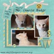 Misfit Mr. Charlie Baker