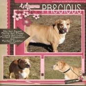 Precious- Providing for Paws