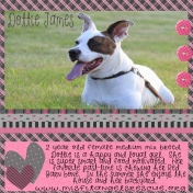Dottie James Misfit Angels Rescue