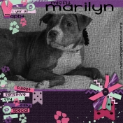 Marilyn Misfit Angels Rescue