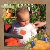 Cutest Little Pumpkin